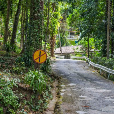 Old rode at Lam Ru Nationalpark – Khao Lak